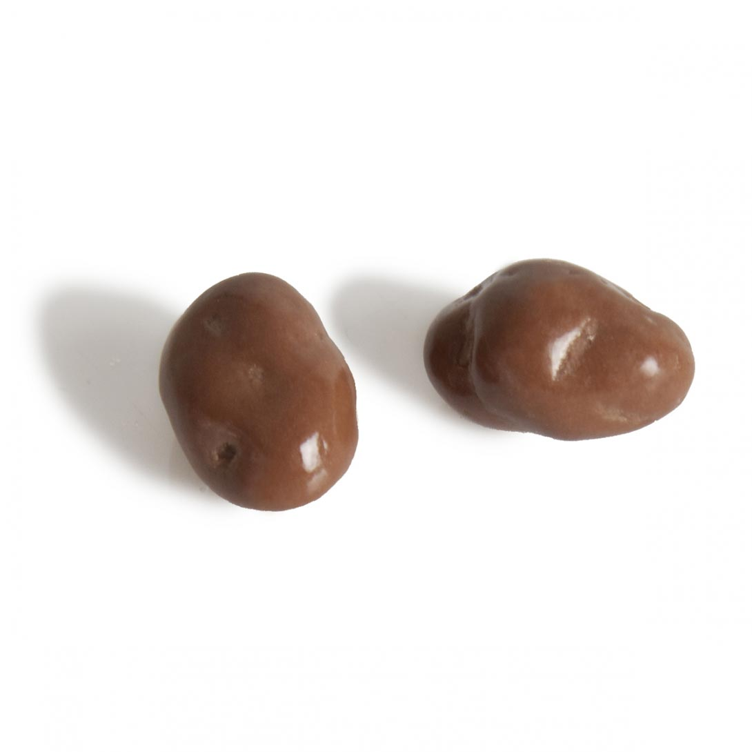 milk-chocolate-raisins
